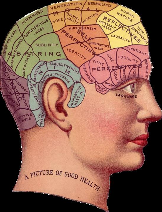 Psicología Ayurveda - Autogestión de la Salud Mental